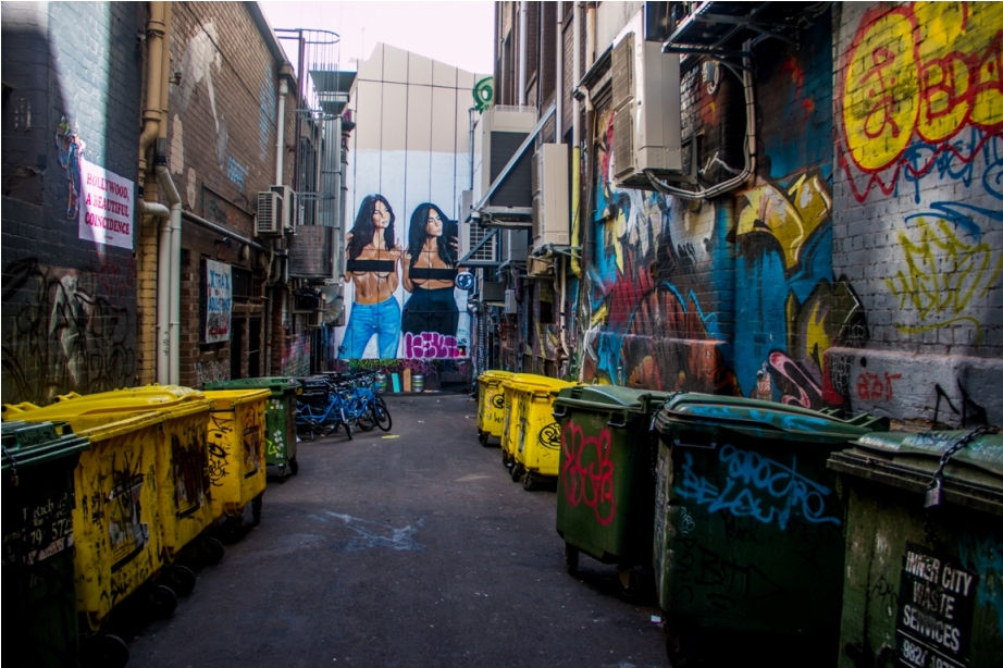 Grafitti Street Art Hosier Lane Melbourne Australia