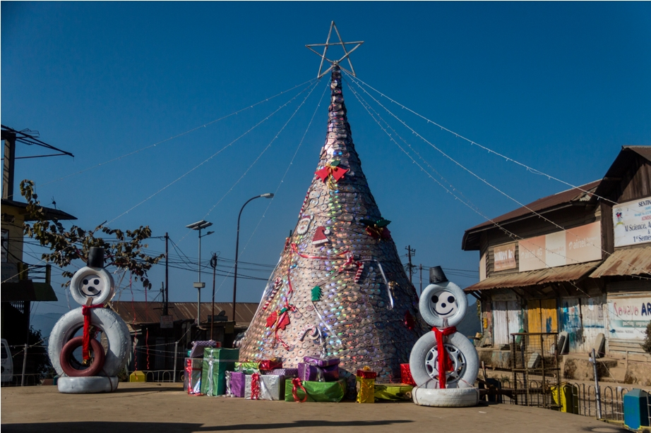 Christmas Tree Ukhrul Manipur North East India (2)