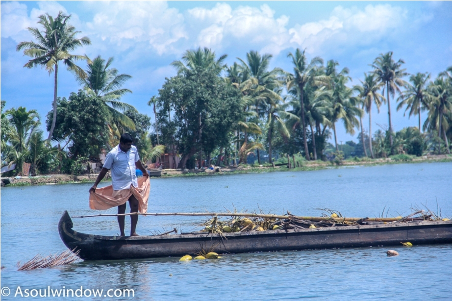 Alleppey Alappuzha. Vembanad lake Backwaters Kerala India (5)