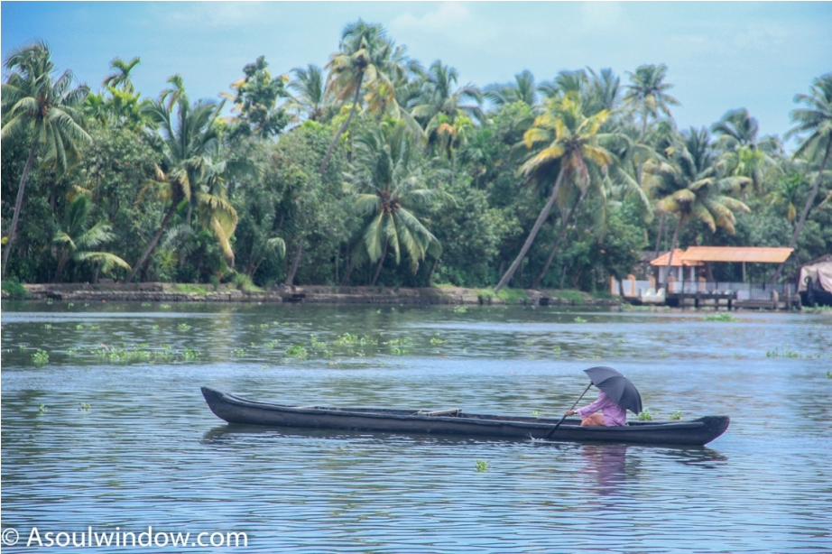 Alleppey Alappuzha. Vembanad lake Backwaters Kerala India (6)