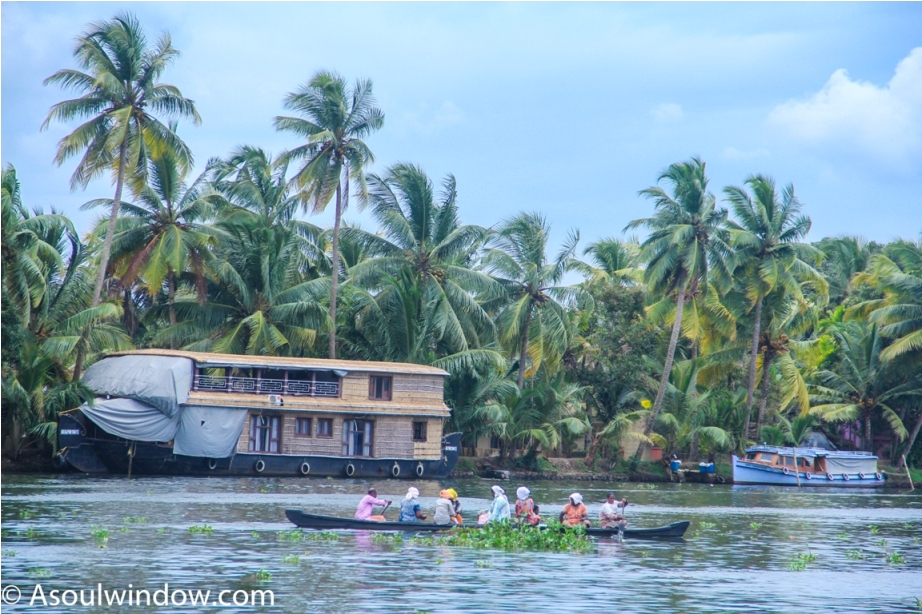 Alleppey Alappuzha. Vembanad lake Backwaters Kerala India (7)