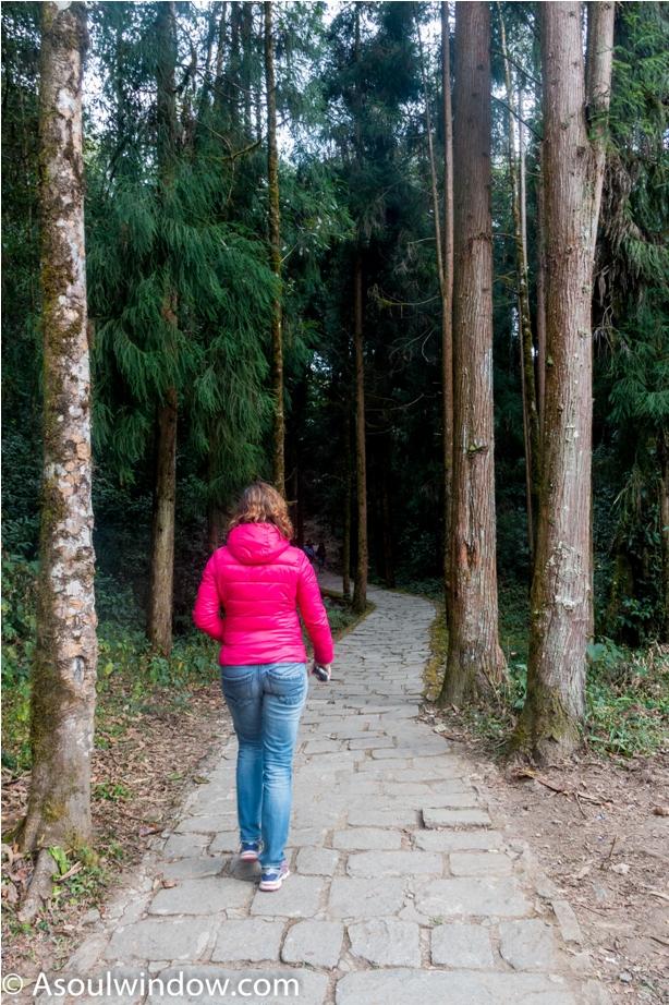 Pathway. Rabdentse ruin site Pelling West Sikkim