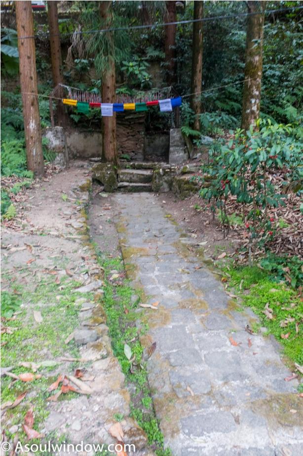 TSHO NAM CHU Rabdentse site Pelling West Sikkim (22)